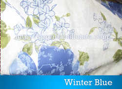 winter-blue